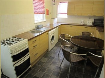EasyRoommate UK - Student Room to Let - Plymouth, Plymouth - £377 pcm
