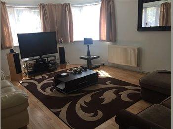EasyRoommate UK - Double room in Watford town centre  - Watford, Watford - £650 pcm