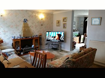 EasyRoommate UK - Lovely  place for successful studies - Chichester, Chichester - £425 pcm