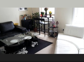 EasyRoommate UK - Lovely double room in gorgeous Holland Park flat - Notting Hill, London - £888 pcm