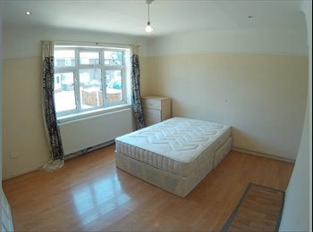 Big Double/Twin room available now in a well conne