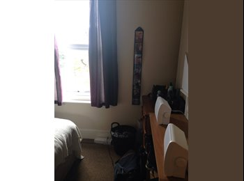 Spacious double room to rent in friendly student house