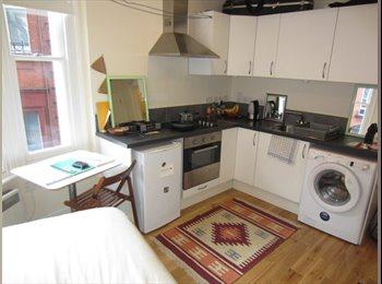 flat 5 minute walk to Euston Station or Russel Square,