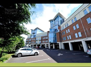 EasyRoommate UK - BT9 Modern Apartment - Double Room To Rent - Belfast, Belfast - £267 pcm