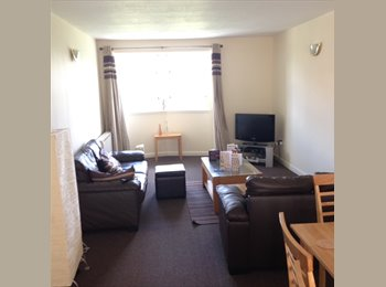 EasyRoommate UK - Ensuite Double Bedroom Available in 2-Bed Modern Flat Beside Kelvingrove Museum - Hillhead, Glasgow - £298 pcm