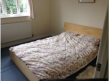 EasyRoommate UK - Large room in a nice cul-de-sac available - Tovil, Maidstone - £500 pcm