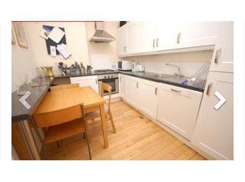 EasyRoommate UK - Room free in a 4 bed flat - Edinburgh Centre, Edinburgh - £435 pcm
