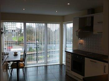 EasyRoommate UK - Executive Double Room available - Aylesbury, Aylesbury - £500 pcm