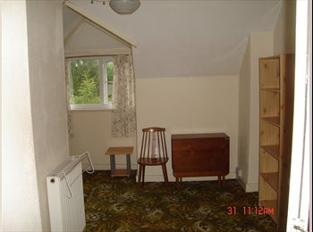 EasyRoommate UK - Clean, self contained one bedroom flat. - Handsworth Wood, Birmingham - £290 pcm