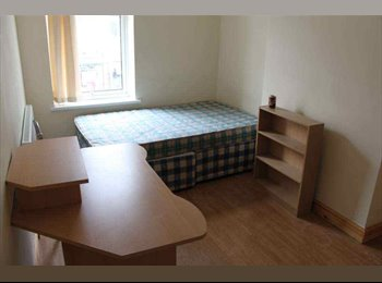 EasyRoommate UK - 8Bed house share for students close to uni - Cathays, Cardiff - £290 pcm