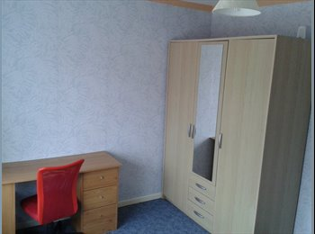 EasyRoommate UK - Sunny large room for rent - Exeter Wonford - Wonford, Exeter - £430 pcm