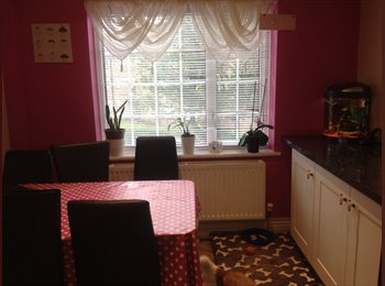 EasyRoommate UK - Lovely double room - Bevendean, Brighton and Hove - £480 pcm