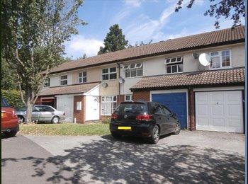 EasyRoommate UK - 1 room available bills included - Edgbaston, Birmingham - £395 pcm