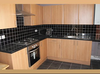 EasyRoommate UK - 3 Bed Modern House - £325 per month all utility bills included. - Kensington, Liverpool - £325 pcm
