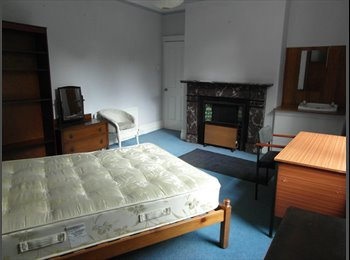 EasyRoommate UK - READ THIS IF YOU WANT A TREBLE LIGHT ROOM, PROFESSIONAL HOUSESHARE, MIXED GENDER, CENTRAL JESMOND - Jesmond, Newcastle upon Tyne - £305 pcm