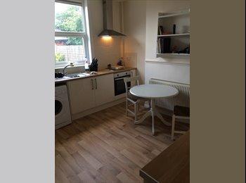 EasyRoommate UK - 1 double bedroom. - Sharrow Vale, Sheffield - £400 pcm