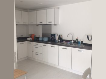 EasyRoommate UK - Brand new flat in Hackney - Double room to rent - Hackney, London - £900 pcm