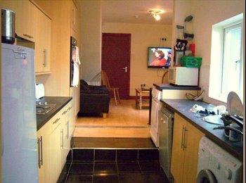 EasyRoommate UK - SELLY OAK BIRMINGHAM STUDENT HOUSE - Selly Oak, Birmingham - £386 pcm