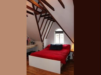 EasyRoommate UK - Lovely double room - Forest Gate, London - £650 pcm