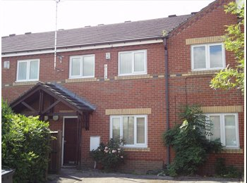 EasyRoommate UK - Double room in city centre - Broomhall, Sheffield - £338 pcm