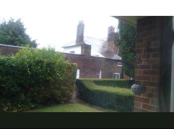 EasyRoommate UK - House in village  - Hemel Hempstead, Hemel Hempstead - £400 pcm
