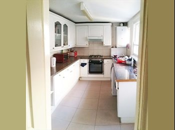 EasyRoommate UK - GREAT ROOMS IN GREAT LOCATION - Alexandra Palace, London - £395 pcm
