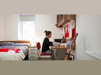 EasyRoommate UK - Liberty Quays Student Accomodation Single Ensuite Room  - Gillingham, Gillingham - £400 pcm