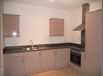 EasyRoommate UK - Ground-floor Flat in Leeds - Morley, Leeds - £530 pcm