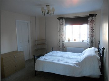 EasyRoommate UK - Pets Included!! Rooms to let in house, Repton Park - Ashford. - Ashford, Ashford - £550 pcm