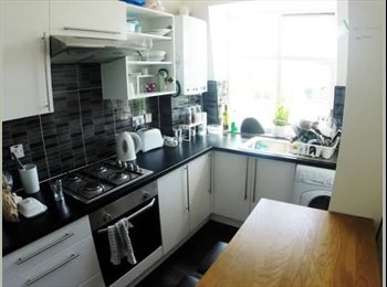 Twin room available in Willesden Green