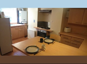 A lovely double  room is up for grabs.