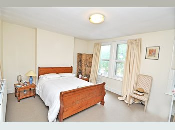A generously-sized double room in fabulous Chelsea SW10