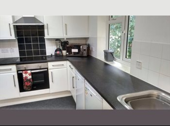 EasyRoommate UK - 1 flat mate urgently needed as soon as possible  - Hales Place, Canterbury - £395 pcm