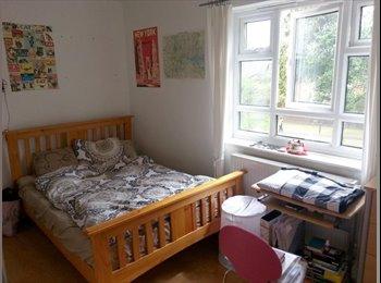 EasyRoommate UK - Gorgeous double bedroom in Putney - Putney, London - £520 pcm