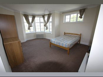 Brand New  Double Room in Luxury Apartment for...