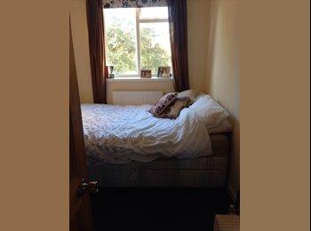 EasyRoommate UK - Lovely double room to rent in Whitechapel! - Whitechapel, London - £660 pcm