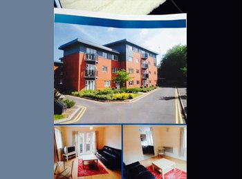 EasyRoommate UK - New build - Gosford Green, Coventry - £900 pcm