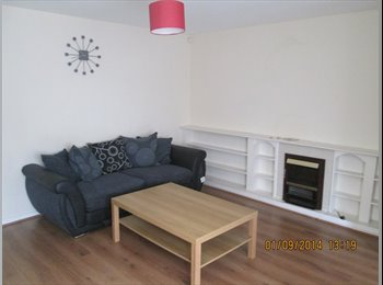 Double Room Available in Fantastic House