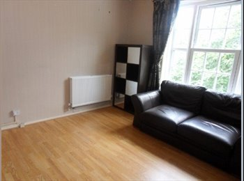 2/3 bed flat in Euston ,sharers aloud