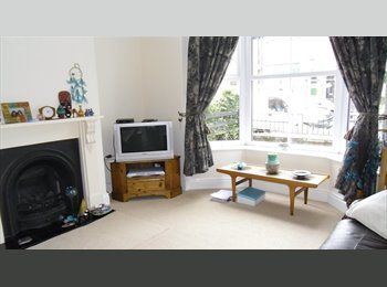 EasyRoommate UK - Ella Street 2 lovely double rooms available - Kingston-upon-Hull, Hull - £350 pcm