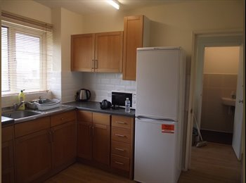 EasyRoommate UK - House in great location, newly refurbished, two toilets, new floor, newly painted and big bright kit - Hatfield, Hatfield - £520 pcm