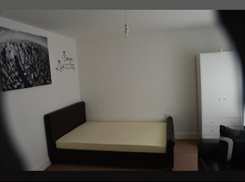 Large Double room in a luxury flat