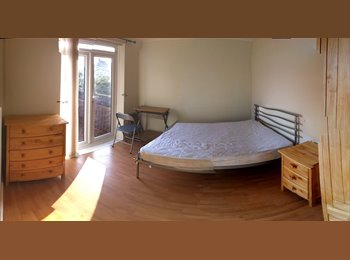 EasyRoommate UK - Double room in shared student house near UEA - Norwich, Norwich and South Norfolk - £395 pcm
