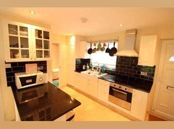 EasyRoommate UK - Two housemates looking for a third! - Poplar, London - £600 pcm