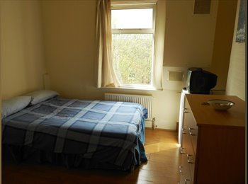 Amazing Double Room Available NOW in Zone 2!
