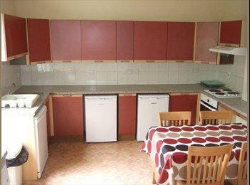 EasyRoommate UK - Friendly group need one more house mate - Cheltenham, Cheltenham - £409 pcm