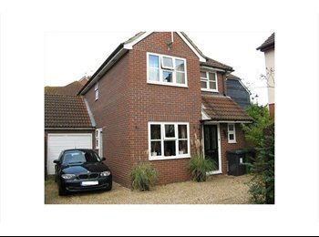EasyRoommate UK - Choice of double rooms (one ensuite) in friendly relaxed house, Basingstoke and Deane - £450 pcm
