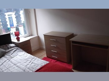 PONTYPRIDD - Newly Available Accommodation