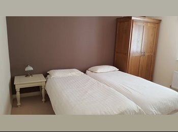 Professional Lodger Wanted - £450 pm all bills inc