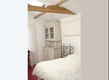 EasyRoommate UK - 2 beautiful unusual large rooms - Stockwell, London - £800 pcm